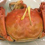 上海蟹の有名店 上海 南京東路「成隆行蟹王府」で上海蟹のフルコース